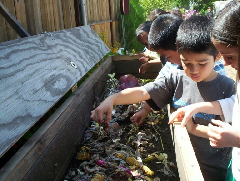 Kids And Composting Bin